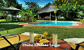 Chobe Savanna Lodge, Safari packages, lodges and safari camps in Chobe