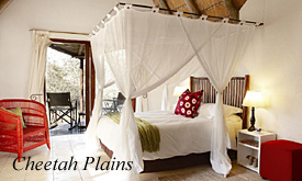 Cheetah Plains Safari Lodge, safari packages from Johannesburg