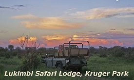 Safari Drive at Lukimbi Safari Lodge,Kruger Park, South Africa