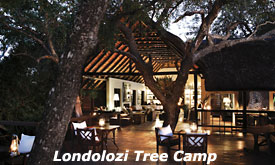 Londolozi Tree Camp,Sabi Sands, South Africa