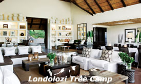 Lounge at Londolozi Tree Camp, Londolozi Private Game Reserve