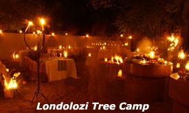 The Bomma, Londolozi Tree Camp,Sabi Sands, South Africa