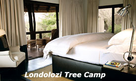 Londolozi Tree Camp Bedroom,Sabi Sands, South Africa
