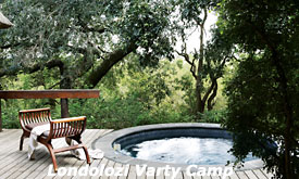 Private Pool at Londolozi Varty Camp,South Africa