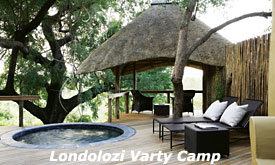 Private Plunge Pool at Londolozi Varty Camp,Luxury Safari Camp in Sabi Sands, South Africa