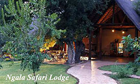 Ngala Safari Lopdge, Madikwe Safari Lodge Packages from Johannesburg, Madikwe, Kruger Park and Sun City Package