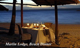 Beach Dinner, Marlin Lodge, Luxury Island Lodge on the Bazaruto Archipelago in Mozambique