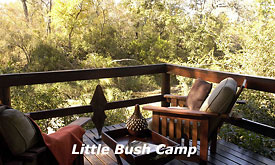 Sabi Sabi Little Bush Camp, Sabi Sabi's Luxury Safari Lodge in Sabi Sands, South Africa, Private Viewing Deck