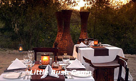 Sabi Sabi Little Bush Camp, Luxury Safari Lodge in Sabi Sands, South Africa