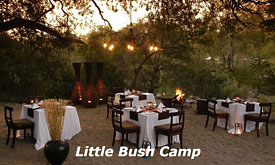The Bomma at Sabi Sabi Little Bush Camp, Sabi Sabi's Luxury Safari Lodge in Sabi Sands, South Africa