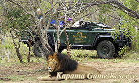 Kapama Game Reserve, Timbavati, South Africa, Luxury African Game Lodges and Safari camps, African Safari Lodges