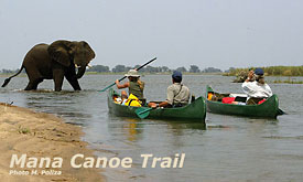 African Safari Vacations, African Safaris, Mana Canoe Trail, Lower Zambezi, Zimbabwe, Vacation in Africa
