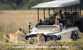 African Safari Vacations, Vumbura Plains, Botswana Safaris, Vacation in Africa