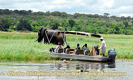 Botswana Safari Destinations, Chobe Chilwero, Chobe National Park