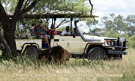 Botswana Safari Destinations, Chief's Camp, Chief's Island