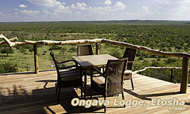 Ongava Safari Lodge, Etosha national Park,Namibia Safari Destinations, Namibia Tours & Safari Vacations