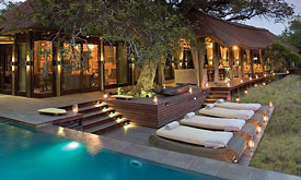Phinda Game Reserve,Luxury South African Safari Destination