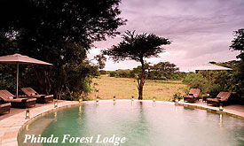 Phinda Forest Lodge, Zululand, South Africa