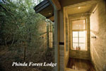 Phinda Game Reserve, Forest Lodge