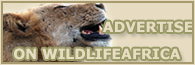 ADVERTISE YOUR PRODUCTS ON WILDLIFE AFRICA