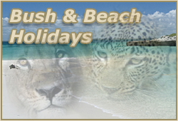 BUSH & BEACH HOLIDAYS