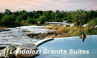 Cape Town and Londolozi Safari Packages