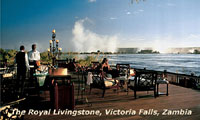 Cape Town and Victoria Falls Safari Packages