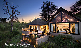 Ivory Lodge, Lion Sands, Sabi Sands Packages