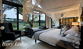 Ivory Lodge, Lion Sands Game Reserve, Special Deals on safaris