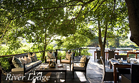 River Lodge, Lion Sands Safari Deals