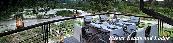 Exeter Game Reserve - Leadwood Lodge, luxury safari lodge, Sabi Sands Private Game Reserve part of Kruger National Park