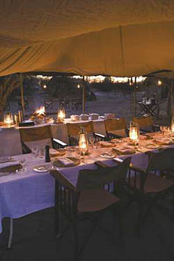 Savuti Under Canvas, Botswana Safari Camp