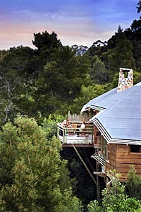 Tsala Treetop Lodge, Garden Route South Africa