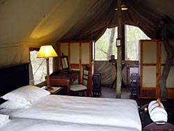 Palins Camp in Kruger National park, Rhino Walking Safaris in Kruger National Park