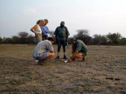 Rhino Walking Safaris in Kruger National Park, Plains Camp