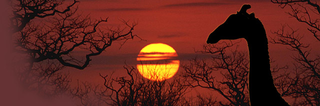 Botswana Safaris and holiday Tours as provided by Wildlife Africa and Orient Express