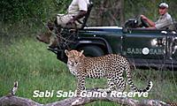 Sabi-Sabi1