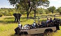 african-safari-honeymoon2S