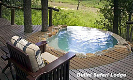 dulini-safari-lodge7