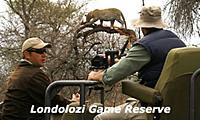 londolozi-game-reserve2