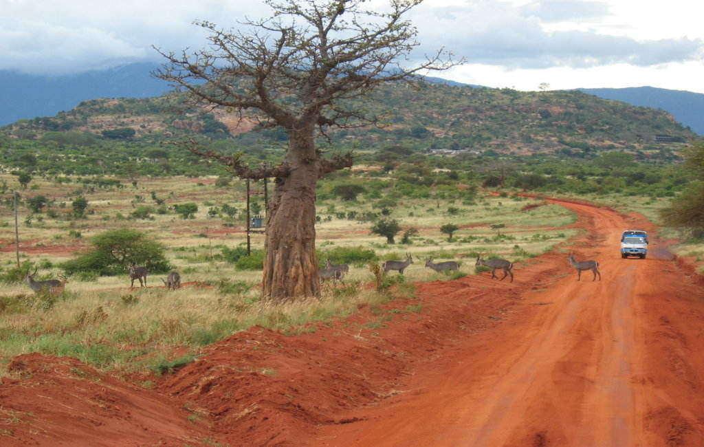 rsz_botswana-safari-panorama