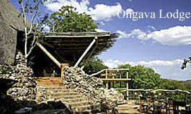 ONGAVA-LODGE---D.-Allen
