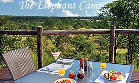 elephantcamp1