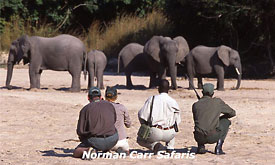 norman-carr-safaris20