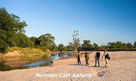 norman-carr-safaris4