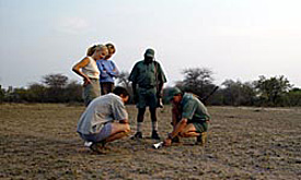 ISIrhino-walking-safaris4