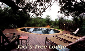 jacis-safari-lodge1