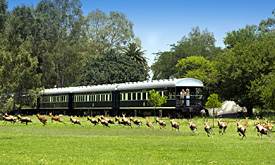 rovos-rail-train14
