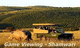 shamwari-game-reserve5