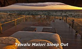 tswalu11